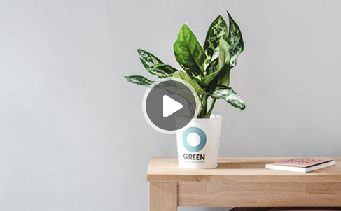 WOT! pakt uit - Ogreen Clean Machine