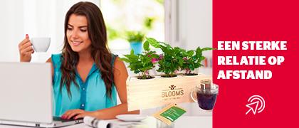 BloomsBox Coffee Box